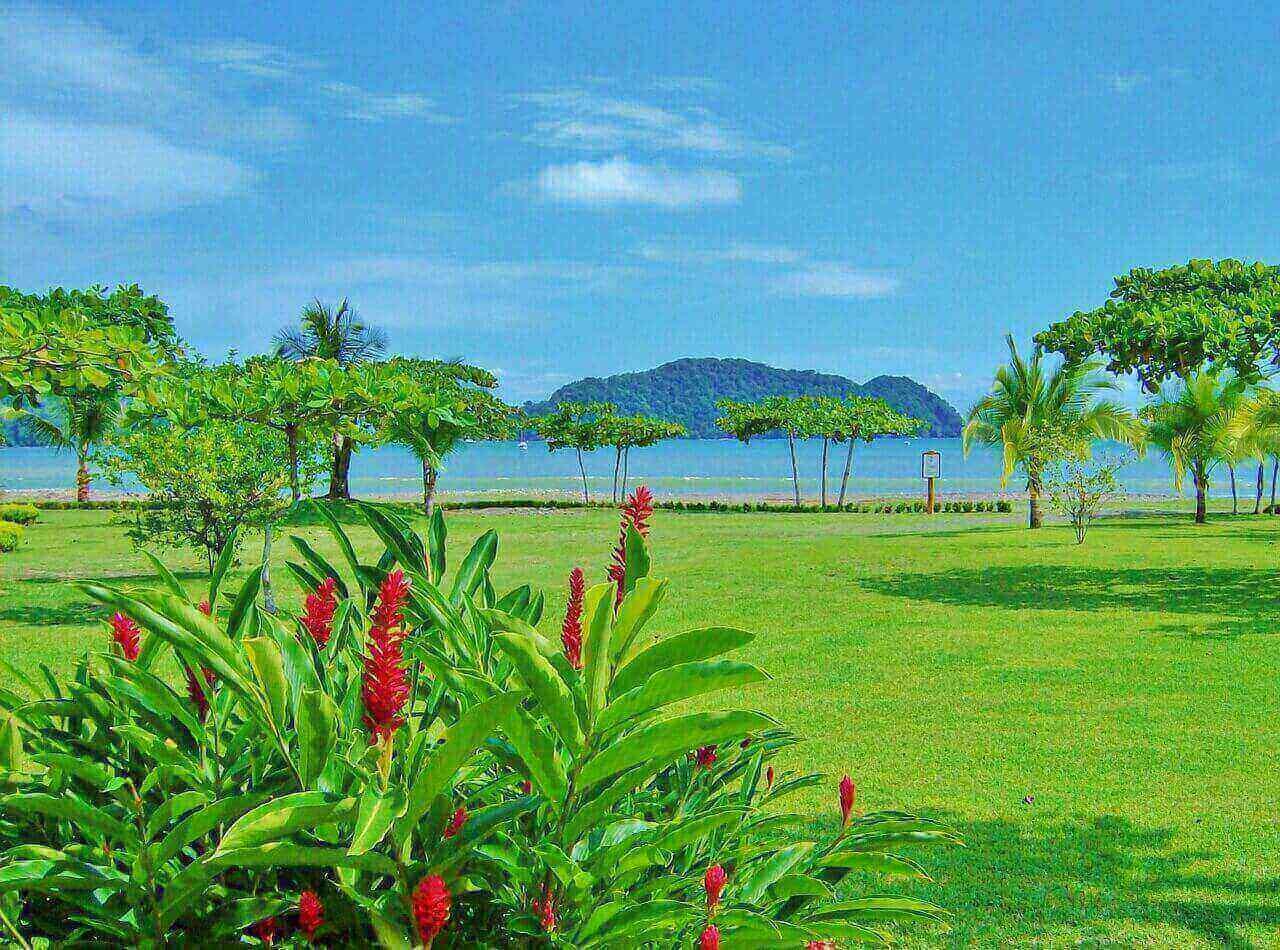 Partir en vacances au Costa Rica pour faire le plus de découvertes